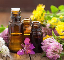 L-aromatherapie-Une-histoire-vieille-comme-le-monde