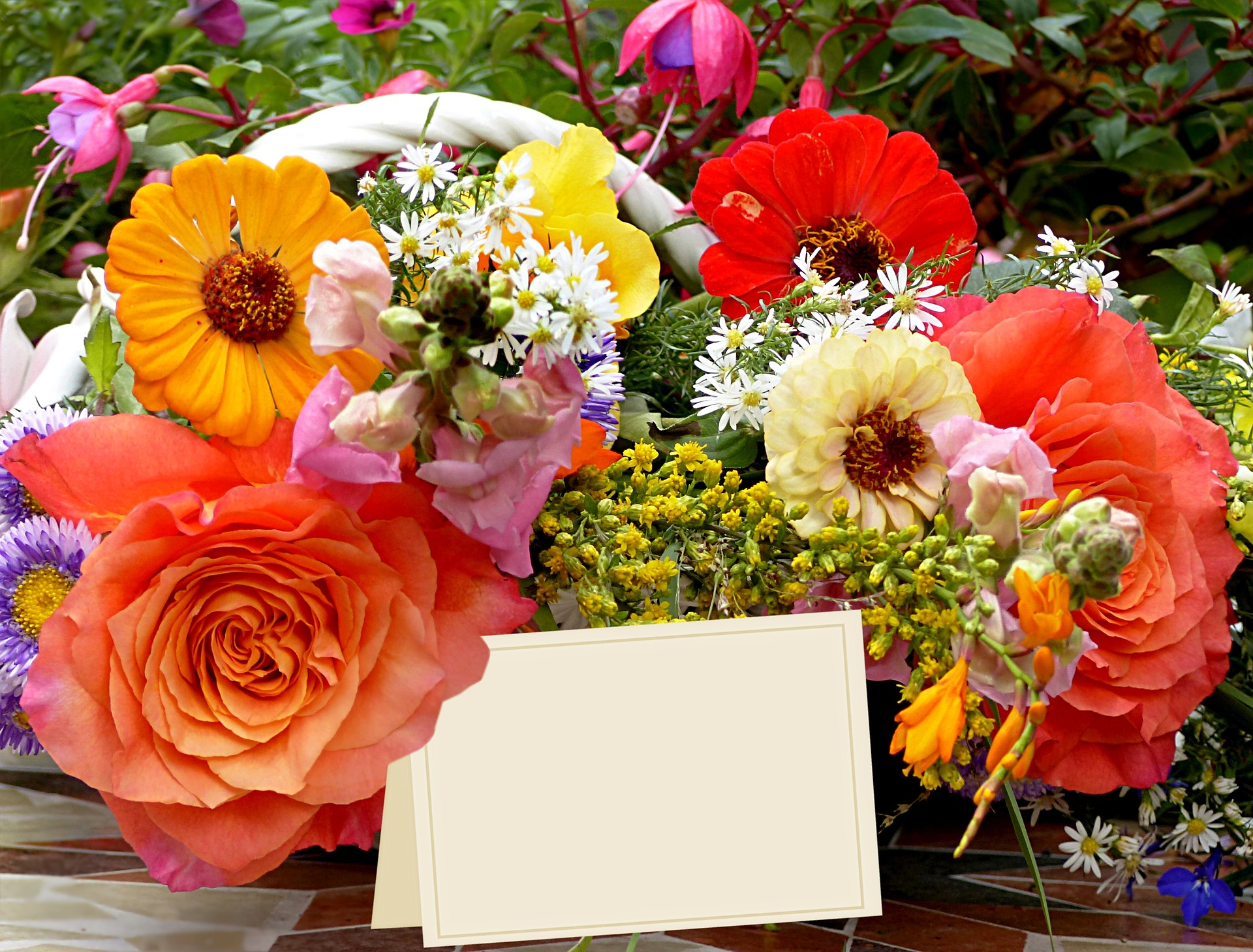 Quelle fleur offrir à une femme